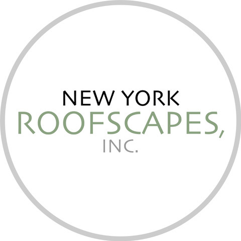 New York Roofscapes